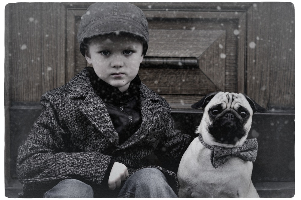 Wertvoll -my pug and me
