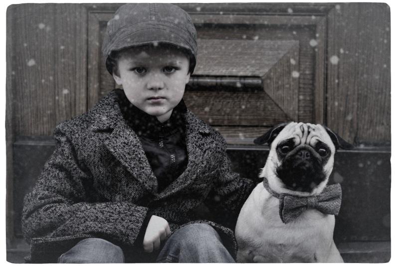 Wertvoll -my pug and me