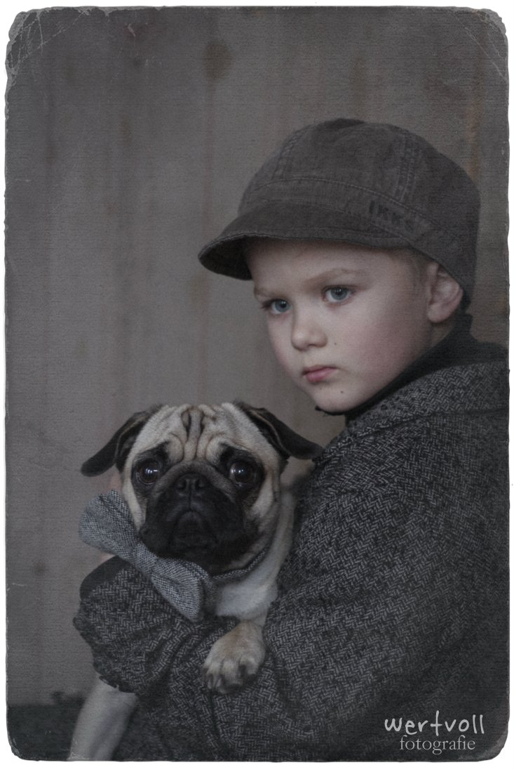 Wertvoll -my pug and me 3