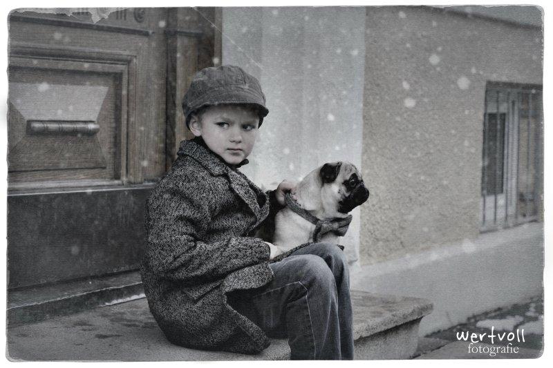 Wertvoll - my pug and me 2