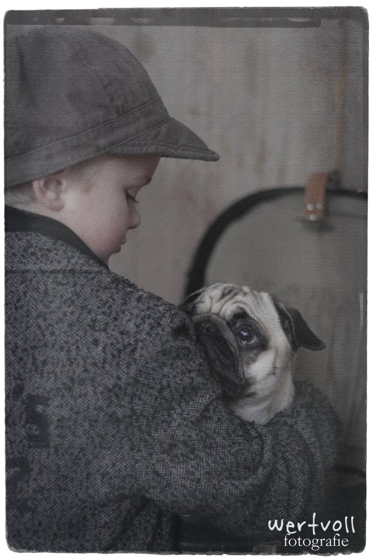 Wertvoll - my pug and me 2