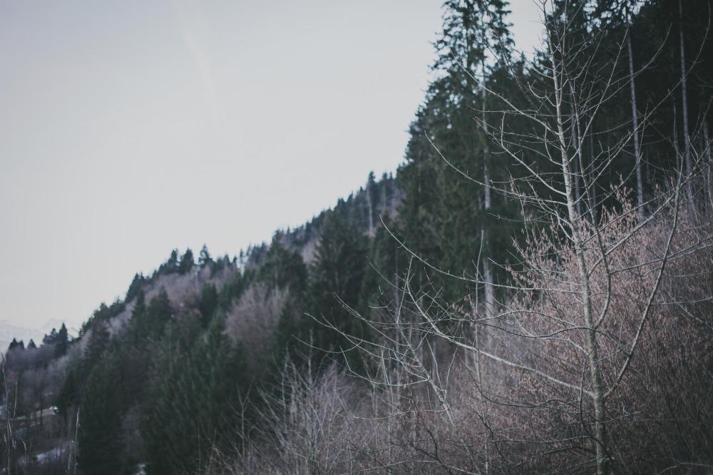 wertvollfotografie-86